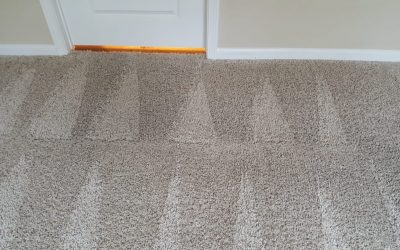 Low Moisture Cleaning vs. Hot Water Extraction